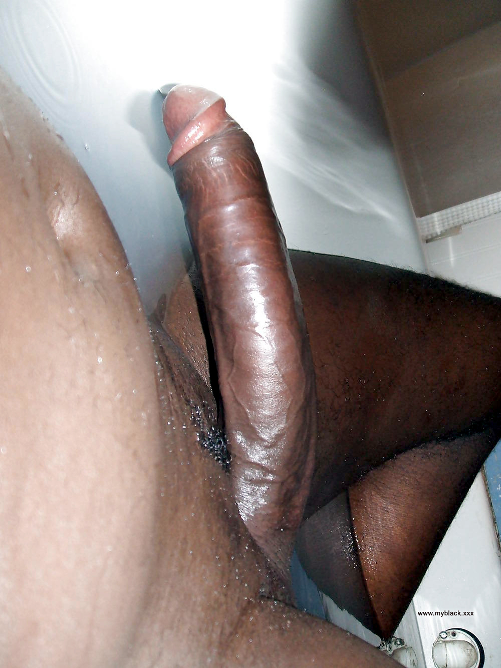 Shaved black dick